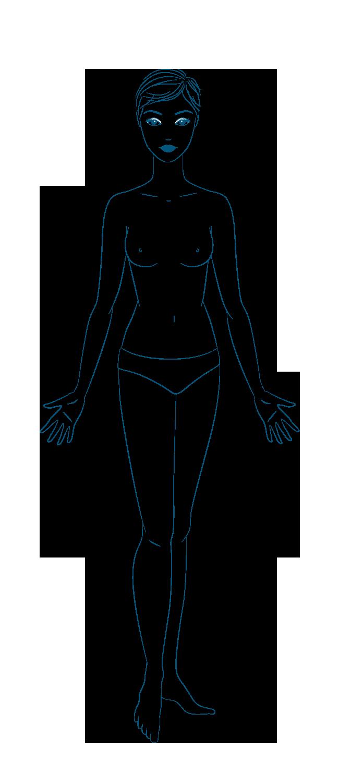 anatomia Donna Fronte