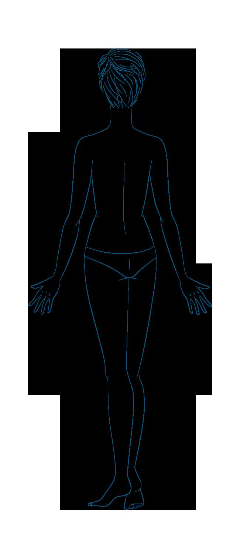 anatomia Donna Retro