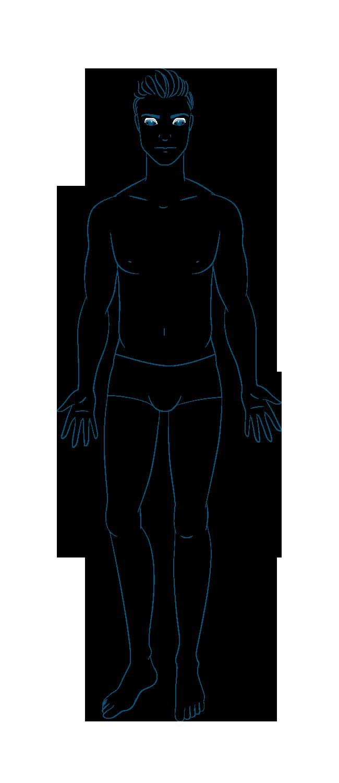 anatomia Uomo Fronte