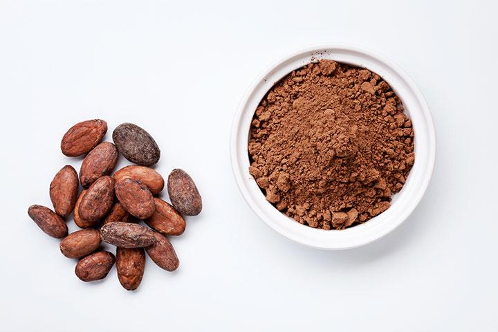 cacao-centro-seb