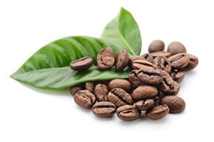 caffe-grani-centro-seb