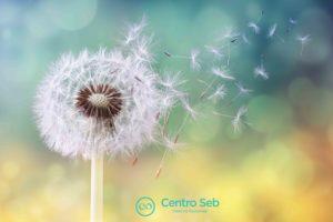 allergie_centro-seb