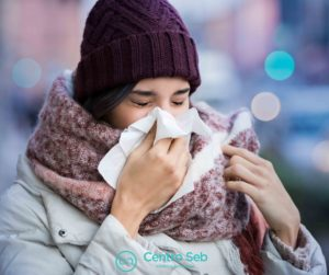 influenza2_centro-seb